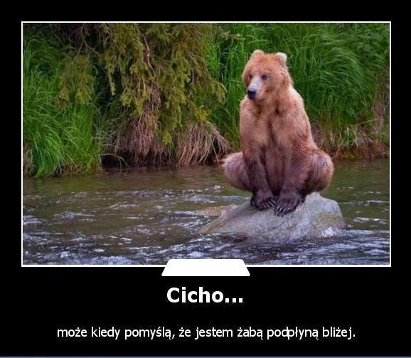 Cicho