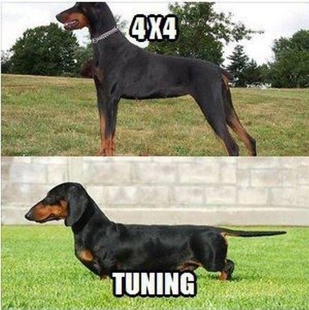 4x4 / tuning