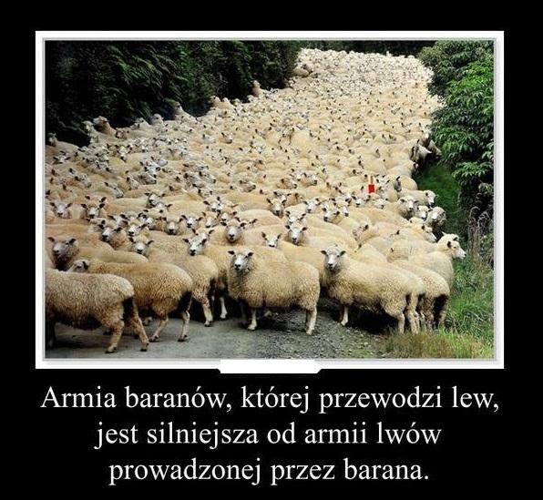 Armia Baranów