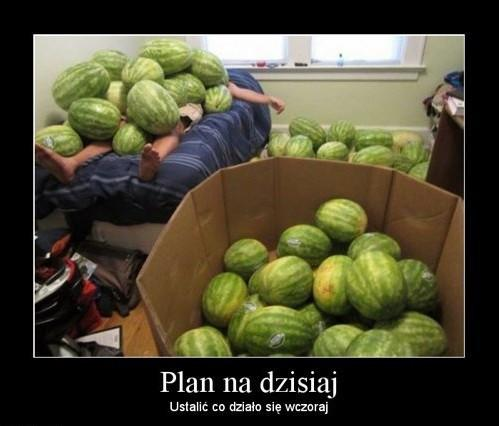 Plan na dzisiaj