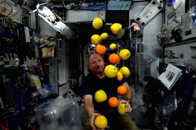 Owoce w kosmosie