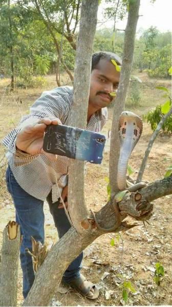 Selfie z kobrą